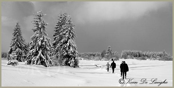 winter-169