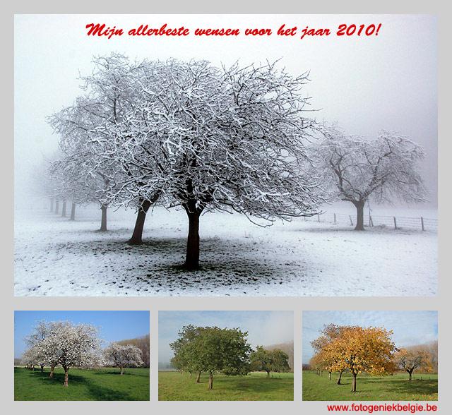 Nieuwjaarswensen | Blog van Fotogeniek België / Fotografie Koen De ...